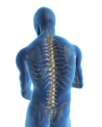 Back-posture