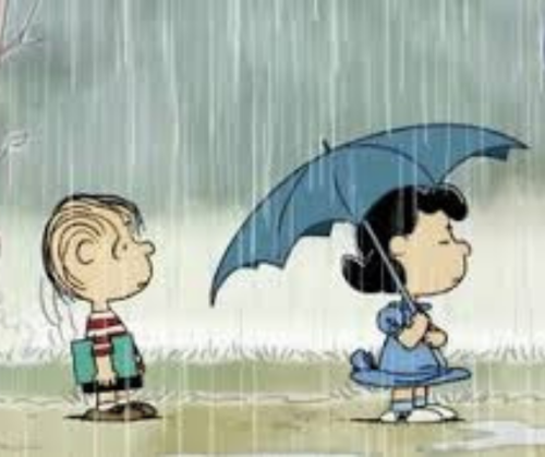 Peanuts umbrella